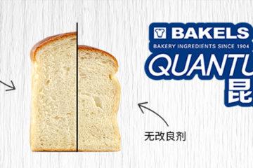 碧琪昆腾高级面包改良剂